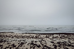 Panoramic view of Baltic sea from sandy shore. Thick white fog, mist. Waves, water splashes. Seascape. Weather, climate change, nature, danger, shipwreck concepts. Picturesque monochrome scenery