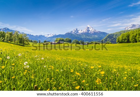Panoramic view of beautiful landscape in the Alps with fresh green meadows and blooming flowers and snow-capped mountain tops in the background  on a sunny day with blue sky and clouds in springtime #400611556