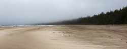 Panoramic View of Beautiful Sandy Beach on the Pacific Ocean Coast during a foggy morning. Taken in Raft Cove, Northern Vancouver Island, British Columbia, Canada. Nature Background Panorama