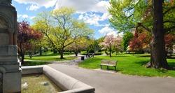 Panoramic view of Boston Public Garden