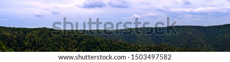 Panoramic view of green deep forest and gloomy sky #1503497582