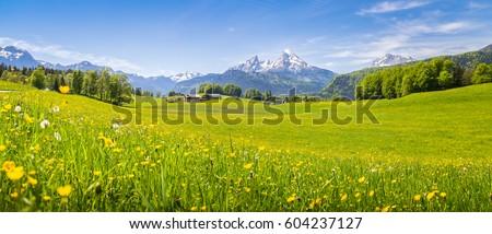 panoramic view of idyllic...