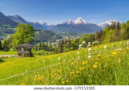 Panoramic view of idyllic mountain scenery in the Alps with traditional mountain chalet and fresh green mountain pastures with blooming flowers on a sunny day with blue sky and clouds in summer