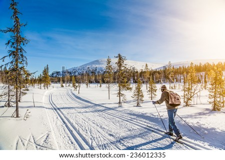 Panoramic view of male person cross-country skiing in beautiful nordic winter landscape in Scandinavia with blue sky and golden evening light at sunset, Europe