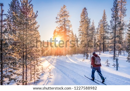 Photo of  Panoramic view of man cross-country skiing on a track in beautiful winter wonderland scenery in Scandinavia with scenic evening light at sunset in winter, northern Europe