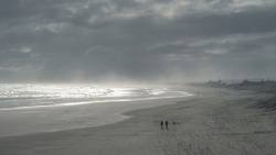 panoramic view of Muriwai beach on a cloudy day
