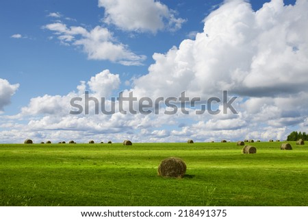 panoramic view of nice green valley on blue sky background