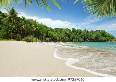 panoramic view of nice  paradise like empty tropical beach