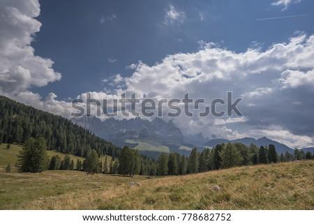 Panoramic view of Pale di San Martino mountain range & summits in clouds as seen from Malga Bocche, Paneveggio Nature park, above Rolle pass, Bellamonte village, Predazzo , Trentino, Dolomites, Italy