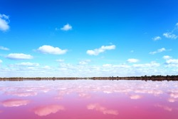 Panoramic view of Pink Salt Lake in Western Australia. This lake turns pink in summer cause of an algae with red pigments. Blue sky, horizon,copy space.