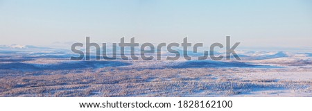 Panoramic view of Swedish northern nature during winter Foto d'archivio ©