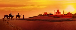 Panoramic view of Taj Mahal during sunset. Camel caravan going through the desert. India