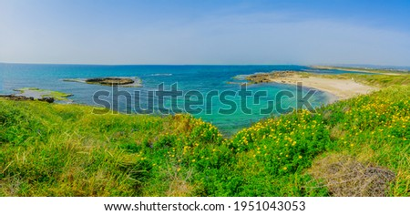 Panoramic view of the beach, coves and sandstone cliffs in Dor beach, Northern Israel Stockfoto ©