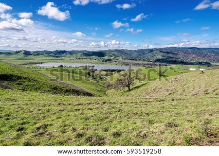 Shutterstock Panoramic view of the Lagoon Valley Park in Vacaville, California, USA, featuring the chaparral in the winter with green grass, and the lake