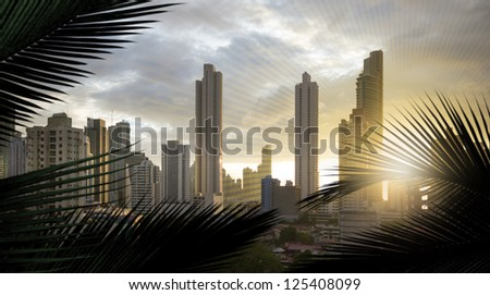 panoramic view of the skyscrapers of panama city, in central america,  with additional, slight sun lines, to adapt the similar form of the silhouettes of the palm leaves
