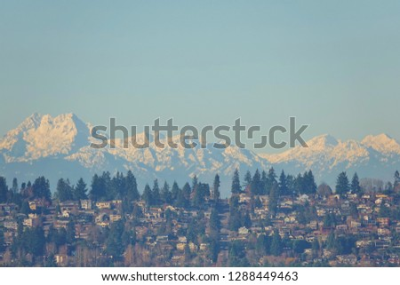 Panoramic view of the snow covered Olympic Mountain range as a beautiful backdrop under clear blue January sky with a hillside Seattle neighborhood filled with houses & evergreen trees in foreground. #1288449463