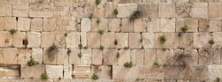 panoramic view of the wailing wall with vegetation