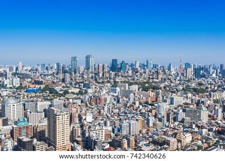 Panoramic view of Tokyo Metropolis, Japan #742340626
