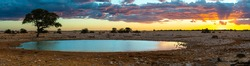 Panoramic view on the Okaukuejo waterhole in the Etosha national park in Namibia. On the right side there is a rhino coming to the waterhole.