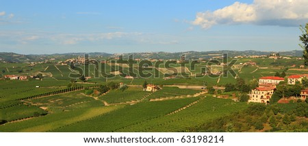 Panoramic view on vineyards in northern Italy.