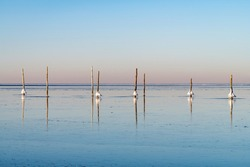 Panoramic view over smooth surface of frozen waters of IJsselmeer, The Netherlands with large lumps of ice sticking to the numerous fishing poles halfway the water and reflected in the ice