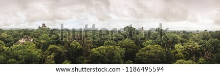 Panoramic view over the jungle and UNESCO site of Tikal, Guatemala from the top of the ruins of a Mayan temple