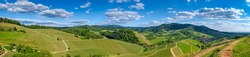 Panoramic view over wide green verdant vineyard landscape on a sunny summer day, blue sky and beuatiful cloudscape