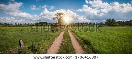 Panoramic view with a country road through the beautiful natural landscape in Belgium. Сток-фото ©
