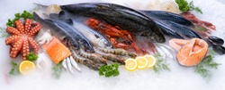Panoramic web banner crop Top view of variety of fresh luxury seafood, Lobster salmon mackerel crayfish prawn octopus mussel and scallop, on ice background with icy smoke in seafood market.