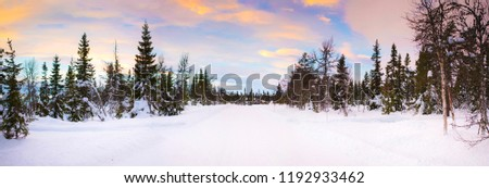 Panoramic wide angle winter landscape of a beautiful colorful orange, yellow, blue and purple dusk evening sky over the forest and snow. Norway. Background.