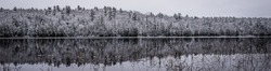 Panoramic winter woods reflection on the lake.  mirror like, still waters reflect the forests next to it.  Light snow under subdued overcast November sky. Waterfront forest.