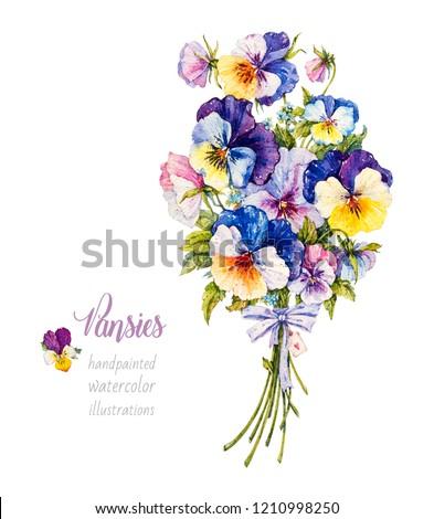 Pansies. Violets. Bouquet of flowers. Botanical watercolor illustration.