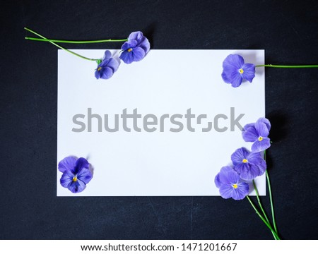 Pansy Flower with Blank Paper Page for Greeting Message. Purple Flowers on Dark Background. Top view, Flat lay, Copy Space