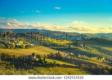 Panzano in Chianti vineyard and panorama at sunset in autumn. Tuscany, Italy Europe. #1242513526