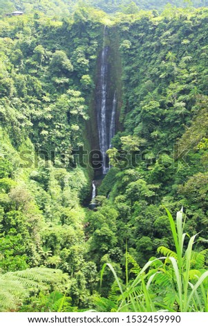 Papapai-uta Waterfall – View one of Upolu's highest waterfalls, at 180m, from the roadside lookout on the Cross Island Road. Stock fotó ©