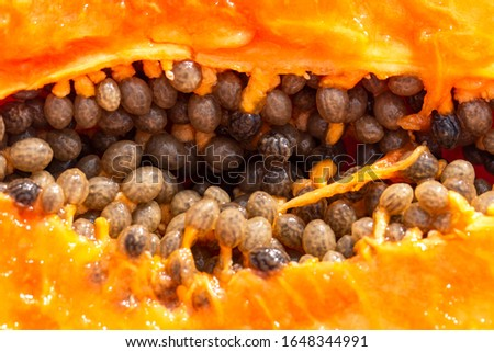 papaya pulp with pits as background