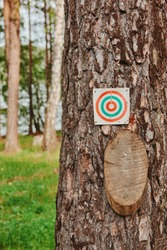 Paper and wood target on the tree for games and shooting training