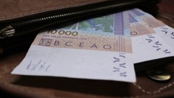 Paper currency F CFA (XOF) of the West African monetary union displayed in bills of 10,000 francs inside leather wallet