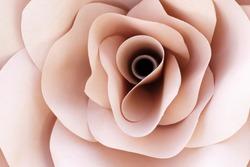 Paper flowers, handmade rose, pastel background