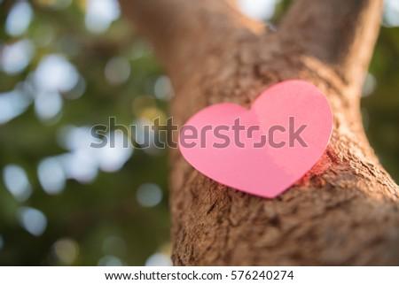 Paper heart shape on tree #576240274