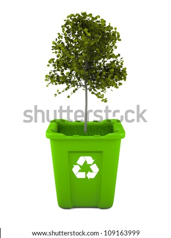 Paper recycling concept with Italian Maple tree growing from green recycle bin