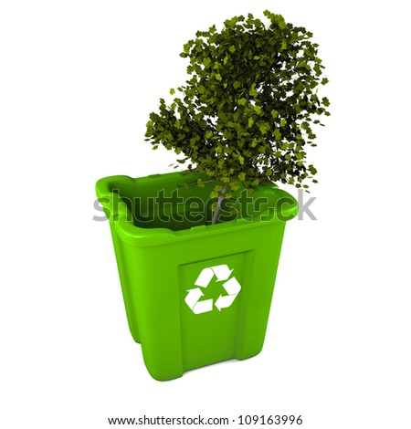 Paper recycling concept with Italian Maple tree in green plastic recycle bin