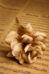 Paper rose flower, closeup