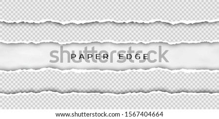 Paper tear border. Set of torn horizontal seamless paper stripes. Paper texture with damaged edge. illustration