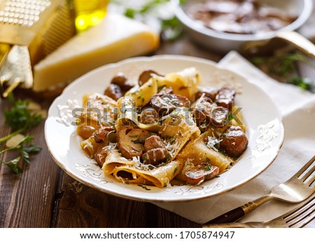 Pappardelle pasta with porcini mushrooms sprinkled with parmesan cheese and chopped parsley, close up