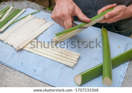 Papyrus artisan in Syracuse cutting the stem of a papyrus plant to obtain thin strips Сток-фото ©