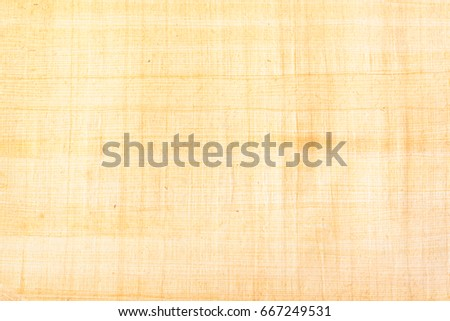 Papyrus paper, abstract texture background. Papyrus was used in an ancient Egypt either painted the hieroglyphs or inscribed them with a reed pen on rolls of papyrus, the antecedent of our paper. #667249531