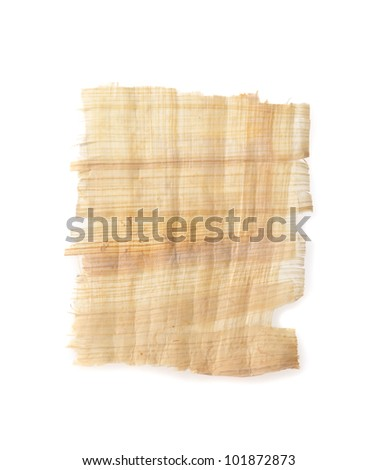 papyrus texture or label isolation on white background