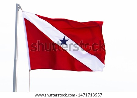 Para (a northern state of Brazil) flag, flying on a flagpole with white background. #1471713557