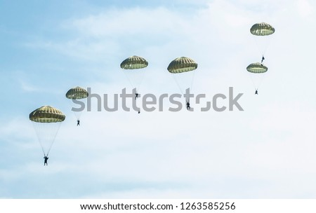Parachutists jump from a military plane during a military exercise. Many soldiers with parachutes in the sky.